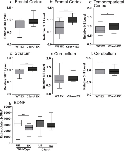 Reduced tissue levels of biogenic amine transmitters were observed in wild-type malaria exposed, but not in C5a receptor knockout offspring, relative to unexposed controls.Brain tissue level of (a) dopamine (DA) and (b) serotonin (5HT) in the frontal cortex, (c) norepinephrine (NE) in the temporoparietal cortex and (d) serotonin (5HT) in the striatum, (e) norepinephrine and (f) serotonin in the cerebellum of wild type malaria exposed offspring (WT EX, n = 15) expressed relative to malaria unexposed wild type offspring and C5a receptor knockout unexposed offspring expressed relative to malaria unexposed C5ar-/- offspring (C5ar-/-EX, n = 15). In utero exposure to EMIP induced dysregulated messenger ribonucleic acid (mRNA) transcription level of BDNF in the fetal brain at gestational day 19. Fetal brain mRNA transcript level expressed as normalized copy number of (g) BDNF. *P < 0.05, **P < 0.01, ***P < 0.005; T-test (a-f) and one-way ANOVA (g). Box plots depict median, 95% confidence interval (box) and range (whiskers).