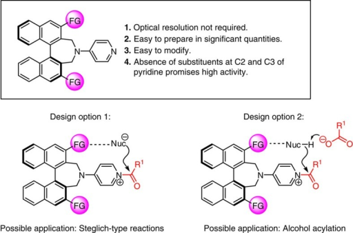 Initial consideration and options in catalyst design.The basic design of the new acyl transfer catalysts, their projected advantages and the possible means by which electrostatic interactions can facilitate transformation. R1, FG, various functional groups.