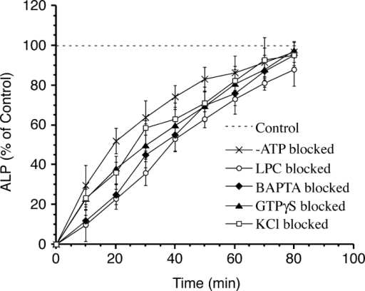 Fusion kinetics after fusion block. Vacuoles were preincubated under fusion conditions with 5 mM BAPTA, 4 mM GTPγS, 420 μM LPC-12, and 250 mM KCl or without ATP-regenerating system for 40 min. Vacuoles were then reisolated as in Fig. 7 and used to set up new fusion reactions without inhibitors. Aliquots were removed every 10 min and set on ice. After 80 min, fusion was assayed. Four independent experiments were averaged. Measured ALP activities varied from 0.4 to 0.6 U for the 0-min value and from 1.6 to 2.3 U for the 80-min value.