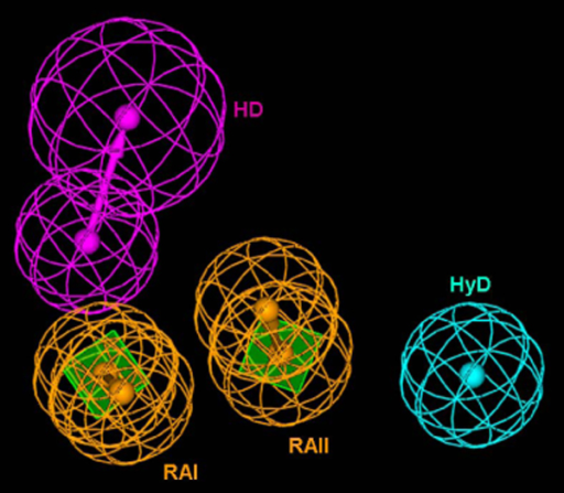 The Hypogen model composed of two ring aromatic (RAI and RAII), one hydrophobic and one hydrogen bond donor features.