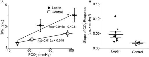 CO2 Response curves in leptin (n = 7) vs. control (n = 4) rats measured 2–2.5 h following the initial bolus injection of leptin. Three levels of CO2 were delivered via altering the fraction of CO2 in the inspired gas delivered via the ventilator. (A) Plot of the average phrenic nerve activity at each level of end-tidal PCO2. Responses were fit with a least squares regression for which the equations are shown. (B) Scatter plot of slopes of the individual CO2 responses obtained for each animal as well as the group means ± S.E.M. *P < 0.05. Horizontal error bars in (A) indicate differences in the end-tidal PCO2 for individual animals.