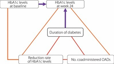 Duration of diabetes and HbA1c levels at baseline were significant determinants of the HbA1c level at 24 weeks. The HbA1c level to be attained at week 24 is calculated from the duration of diabetes and the HbA1c level at baseline.