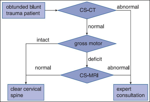 Simplified algorithm for the evaluation of cervical spine injury in the obtunded blunt trauma patient. CS-CT: Cervical spine computed tomography; CS-MRI: Cervical spine magnetic resonance imaging