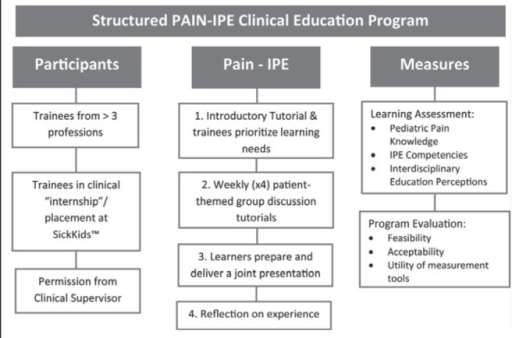 Plan for structured pain interprofessional education (IPE) clinical placement