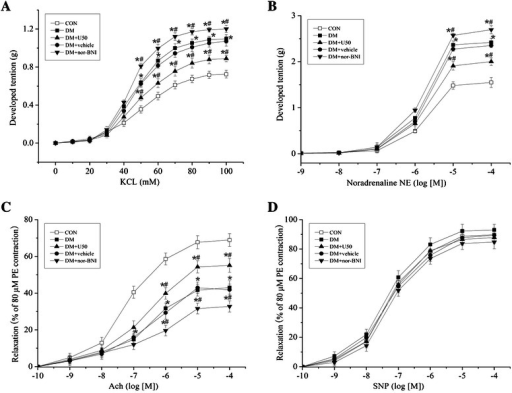 U50,488H improved vasoconstrictive and vasodilative functions of thoracic aortas in DM rats. Concentration-response curves for KCl (0–100 mmol/L) (A) or NE (10−9-10−4 mol/L) (B) induced vasoconstriction. U50,488H administration induced a rightward shift in the concentration-response curves, while nor-BNI administration induced a leftward shift in the concentration-response curves. (C) Concentration-response curves for ACh-induced vasodilation showed that U50,488H treatment improved vasodilative function of thoracic aortas. (D) Concentration-response curves for SNP-induced vasodilation showed no statistical differences among all five groups. *P < 0.05 vs. CON group, #P < 0.05 vs. DM group. (n = 5).