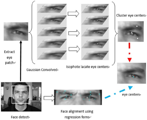 Flowchart of proposed eye-center location method.First, a facial detection process is applied, and then a series of facial landmarks are initiated using a facial bounding box. Regression ferns are applied to achieve facial alignment and the eye center location is estimated. A number of positions are selected as potential eye-center location candidates. Using the facial alignment results, the most likely eye centers are then determined.