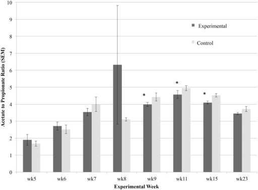 Effect of bacterial probiotic on lamb rumen acetate to propionate ratio over the first six months of life.Significance (P < 0.05) is denoted with *, and error bars show standard error mean.