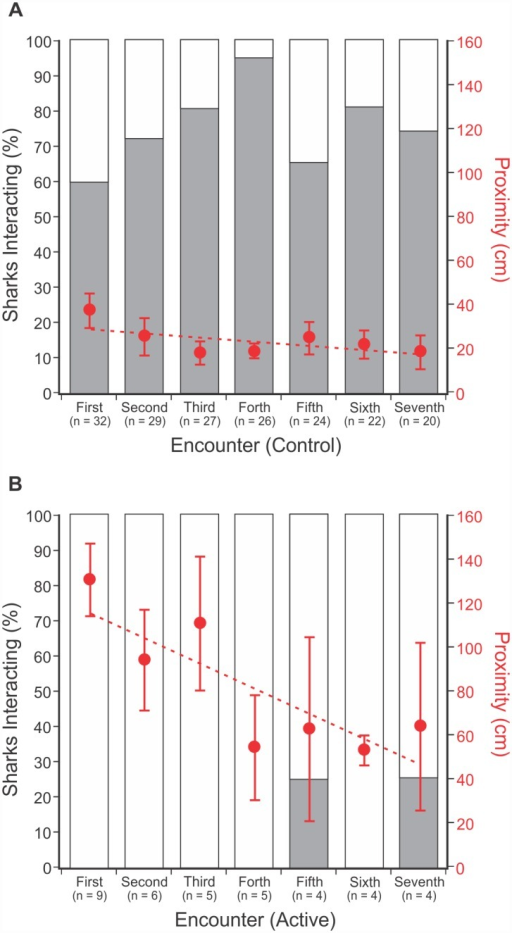 Bar graphs show the proportion of sharks that interacted (grey bar) during each encounter with a control (A) or active (B) Shark Shield™ treatment.Overlaid is the average proximity of sharks to the Shark Shield™ during each encounter (± Std. Error). Proximity trend line (Control): y = -20.876x + 323.56; Proximity trend line (Active): y = -116.37x + 1283.