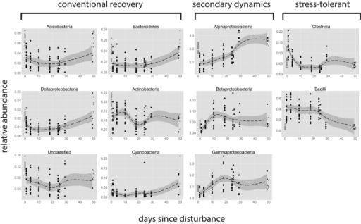 Phylum- and proteobacterial class-specific response patterns to disturbance.The responses of the relative abundance of dominant bacterial phyla, sorted according to the temporal patterns observed. From left to right, dominant phyla/classes exhibited either a conventional recovery, i.e. decrease following the disturbance and gradual recovery; negative secondary dynamics, i.e. negatively affected by the disturbance but rapidly recovering by the secondary response phase; or survivors, i.e. increase immediately after the disturbance, but gradual decrease thereafter. The groups displayed represent 96.5% of the community on average. The same data normalized by 16S rRNA abundance is available in Supplementary Information, S3.