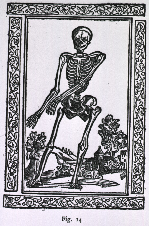 <p>Full length front view of a human skeleton set in a landscape with a town in the background.</p>