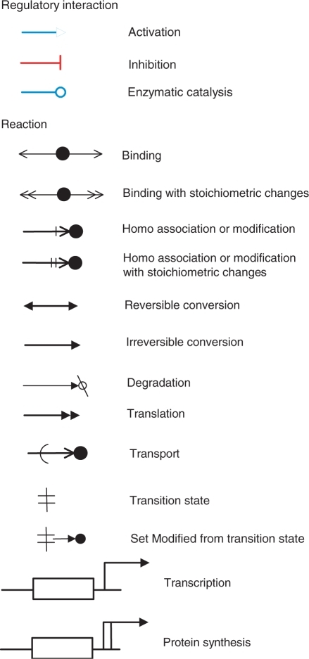 Improved graphical notation for regulators and reactions. The previous version of CADLIVE was improved to make clear the type of reactions. The regulator arrows are colored. The arrows of 'homo association and modification' and 'homo association and modification with stoichiometric changes' are revised. The reaction of 'Set Modified from transition state' is newly added.