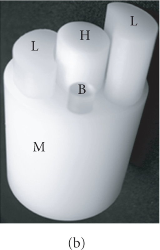 BLT system and physical phantom. (a) Multiview noncontact BLT prototype;(b) the physical heterogeneous phantom consisting of bone (B), heart (H), lungs (L), andmuscle (M); and (c) a slice scanned by microCT scanner.