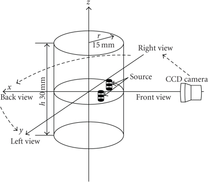 Schematic diagram of the multipleview bioluminescence imaging experiment.