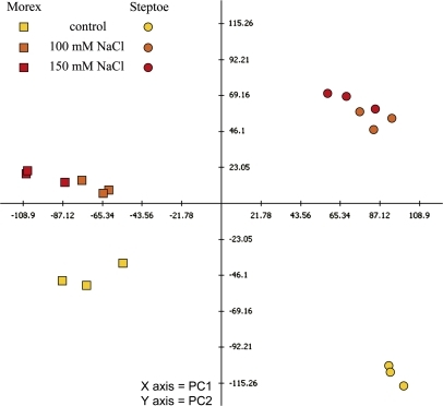 Assessment of technical and biological variation in protein expression profiles of control and treated samples from cvs Steptoe and Morex. Used for calculation were differentially regulated spots with P <0.05. Principle component (PC) 1 revealed genotype-specific expression and accounted for 38.6% of the variation, while PC 2 showed treatment-responsive expression and accounted for 20.9% of the variation.