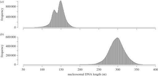 Histograms of (a) mononucleosomal and (b) dinucleosomal DNA fragment lengths of Mixia osmundae. The 30 386 916 mononucleosomal and 27 740 353 dinucleosomal DNA fragments were mapped to the genome. The distribution of the mononucleosomal DNA fragment lengths showed two peaks at 132 and 150 nt, whereas that of the dinucleosomal DNA fragment lengths showed only a single peak at 300 nt.