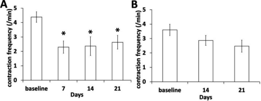 Significant reduction of lymphatic contractile function in an afferent popliteal lymphatic vessel during tumor growth and LN metastasis (A) was observed, whereas lymphatic contraction frequency in an efferent popliteal lymphatic vessel was not changed (B). n = 12 mice. * p < 0.05 vs. baseline.