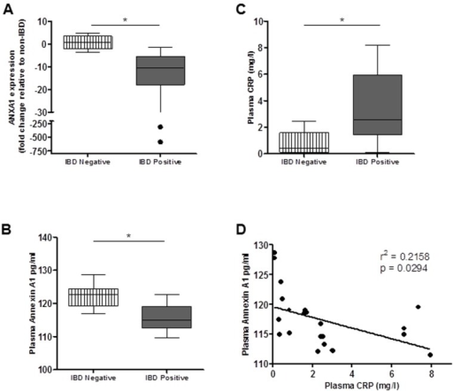 ANXA1 is expressed at lower levels in blood of IBD patients.(A) The level of ANXA1 mRNA was determined by real-time RT-PCR analysis from peripheral blood mononuclear cells was lower in IBD patients compared to healthy controls. (B) Plasma Annexin A1 levels were assayed using ELISA. Patients with IBD had lower levels of plasma ANXA1 compared to IBD negative controls. (C) Plasma CRP levels were measured by ELISA. Healthy controls had significantly lower levels of plasma CRP compared to patients with IBD. An inverse correlation was observed between plasma CRP and plasma ANXA1 (D). (*p < 0.05).