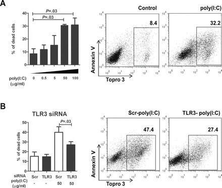 The effect of toll-like receptor 3 (TLR3) activation by poly(I:C) on hepatocellular carcinoma cell line death. A) Dose-dependent induction of cell death in SNU182 cells was measured as Annexin V+ Topro 3+ cells by flow cytometry 24 hours after treatment with 0–100 µg/mL poly(I:C). The graph shows the means and SD from three independent experiments. A one-way analysis of variance test with Tukey's multiple comparison post test was used to calculate two-sided P-values. In the right panel, representative dot plots of cell death 24 hours post-treatment with 50 µg/mL poly(I:C) are shown. B) Poly(I:C)-induced cell death (Annexin V+ Topro 3+ cells by flow cytometry) in SNU182 cells with TLR3 or scrambled siRNA knockdown was measured 24 hours after treatment with 50 µg/mL poly(I:C). The graphs show the means and SD from three independent experiments. Unpaired t-test was used to calculate two-sided P-values. The right panel shows representative dot plots of poly(I:C)-induced cell death with TLR3 knockdown. Scr = scrambled siRNA.