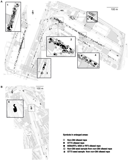Sample locations in the Rhine port of Basel and the St. Johann freight railway station.Locations of plant samples taken in the Rhine port of Basel (A) and the St. Johann freight railway station (B) are denoted with circles. Locations where genetically modified (GM) oilseed rape (OSR) was found are framed and enlarged. GT73 OSR was found in a previous study at locations 1, 2 (Rhine port) and 6 (St. Johann station). Seed cargo is regularly handled at locations 1, 2, 4 and 5.