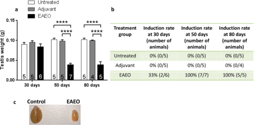 Testicular weight (a) and induction rate (b) of EAEO in animals used in the study. Paired testicular weight of untreated, adjuvant control and EAEO mice 30, 50 and 80 days after the first immunisation (a). Data are expressed as mean ± SEM (n = 4–7 animals per group, numbers of animals per group are shown in the respective columns); ****P < 0.0001, all other comparisons are not statistically significant. Representative image shows macroscopic difference in testicular size from control and EAEO mice 50 days after the first immunisation (c).