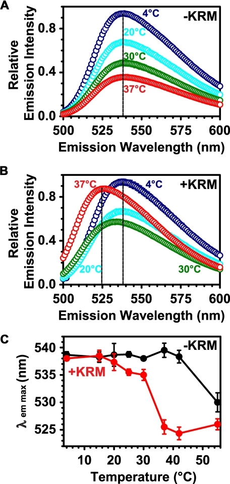 Temperature dependence of the RTA259-NBD probe environment. Net emission scans (λex = 468 nm) of RTA259-NBD (450 nm) are shown in the presence of either microsome buffer (A) or of KRMs (B; 15-20 eq) at increasing temperatures in buffer H (A and B: only 4, 20, 30, and 37 °C are shown). The λem max at different temperatures is shown in (C). The averages of three independent experiments are shown, and the error bars indicate the S.D. of the experiments. However, most of the error bars in A and B are smaller than the circles on the graph.