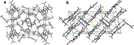Perspective views of the three-dimensional supramolecular network incorporating N—H···O and O—H···O hydrogen bonds (dashed lines) viewed along two different directions.