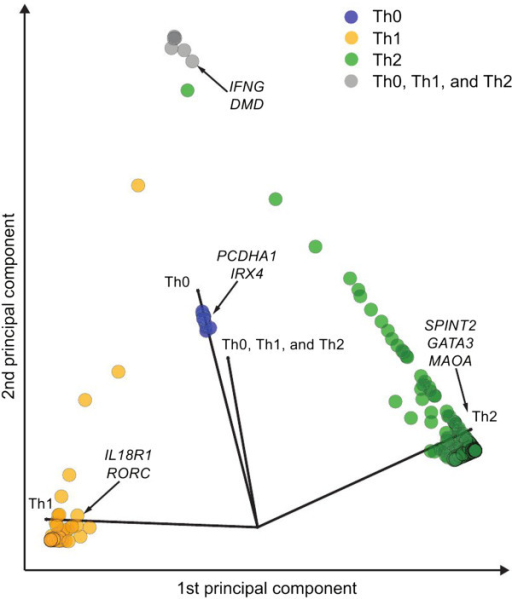 A two-dimensional PCA visualization of the differentially regulated genes among Th lineages. Each point corresponds to a differentially regulated gene. The color of the data point indicate the subset specificity as indicated in the figure. Four axes (black arrows) corresponding to different polarizing cell subsets are shown as a reference. The used probability cut-off for each class was 0.9.