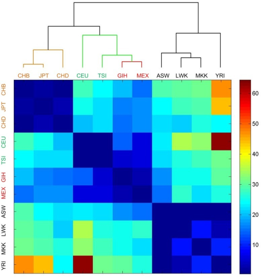 The heat map of the numbers of SNPs in miRNAs with significantly different frequencies between different populations in the HapMap data.The number in a cell means the number of SNPs with significantly different frequencies (with multiple test corrected -values of smaller than 0.01, see Materials and Methods for details) between the two populations of the row and column. There are 11 populations in the HapMap data. ASW, CEU, CHB, CHD, GIH, JPT, LWK, MEX, MKK, TSI, and YRI stand for African ancestry in Southwest USA; Utah residents (CEPH) with Northern and Western European ancestry; Han Chinese in Beijing, China; Chinese in Metropolitan Denver, Colorado; Gujarati Indians in Houston, Texas; Japanese in Tokyo, Japan; Luhya in Webuye, Kenya; Mexican ancestry in Los Angeles, California; Maasai in Kinyawa, Kenya; Toscani in Italia; and Yoruba in Ibadan, Nigeria, respectively. Among the 11 populations, ASW, LWK, MKK and YRI belong to Africa, marked by blue color; CHB, CHD and JPT belong to Asian, marked by yellow color; CEU and TSI belong to European, marked by green color and GIH and MEX belong to America, marked by red color. The dendrogram was generated with the hierarchical clustering implemented in Matlab.