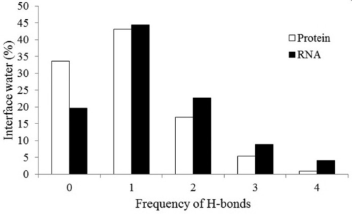 Number of interface water molecules making zero to four H-bonds to the protein or the RNA component. The bars under '0' H-bond represent the number of water molecules making no H-bond with one partner, but they make H-bonds with the other partner.