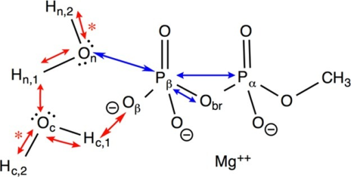 CVs used in the MPP example. Blue and red arrows indicate nonprotonicand protonic CVs, respectively. Bonds marked with an asterisk arefixed. Notations follow Table 1.