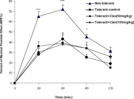 Effect of clavulanic acid on development of tolerance to antinociceptive activity of morphine. Morphine (30 mg/kg, s.c.) was administered to mice two times a day (8 AM and 4 PM) for 3 days in order to produce tolerance. A group of animals (non-tolerant) received saline during these days. Thirty min before each morphine injection, mice were pretreated with clavulanic acid (50 or 100 mg/kg, i.p.) or vehicle. On day 4, antinociceptive tolerance to a challenge dose of morphine (5 mg/kg, s.c) was evaluated using the hot-plate test. Data are mean ± SEM of 6 animals in each group. *p<0.05, ***p<0.001 compared with control group.