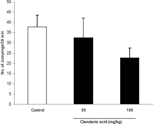 Effect of clavulanic acid on naloxone-induced jumping behavior of morphine dependent mice. To develop morphine dependence, three groups of mice (n=6) received morphine sulfate (50, 50 and 75 mg/kg) at 8 and 12 AM and 16 PM respectively and for 3 consecutive days. A dose of 50 mg/ kg of morphine sulfate was also injected on the 4th day. Clavulanic acid (50 and 100 mg/kg, i.p.) was administered from second day and 30 min prior to morphine injections. Control group was injected with saline (10 ml/kg, i.p.) instead of clavulanic acid. Naloxone (5 mg/kg, i.p.) was injected 2 h after the last morphine injection, and the number of jumps was counted immediately after naloxone injection over a 30 min period. Data are mean ± SEM of 6 animals in each group.
