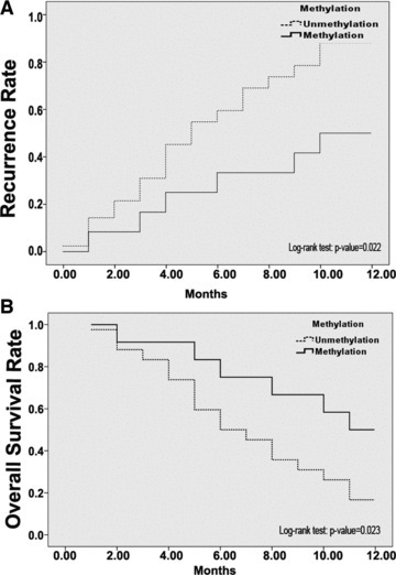 Kaplan–Meier recurrence and overall survival estimates based on the methylation status of CD147 promoter for all HCC patients. (A) Kaplan–Meier recurrence curve. (B) Kaplan–Meier overall survival curve.