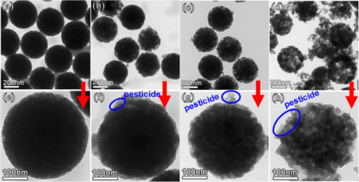 TEM images of Abam-PSNs with different porous structure obtained at various etching time. (a-d) At low magnification: (a) 45 min, (b) 75 min, (c) 105 min, and (d) 120 min; (e-h) the corresponding images of (a-d) at high magnification: (e) 45 min, (f) 75 min, (g) 105 min, and (h) 120 min.