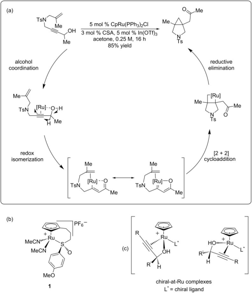 (a) Mechanism for the redox biscycloisomerization reaction. (b) Ruthenium catalyst containing a tethered chiral sulfoxide. (c) Possible diastereomeric complexes formed from alcohol coordination.