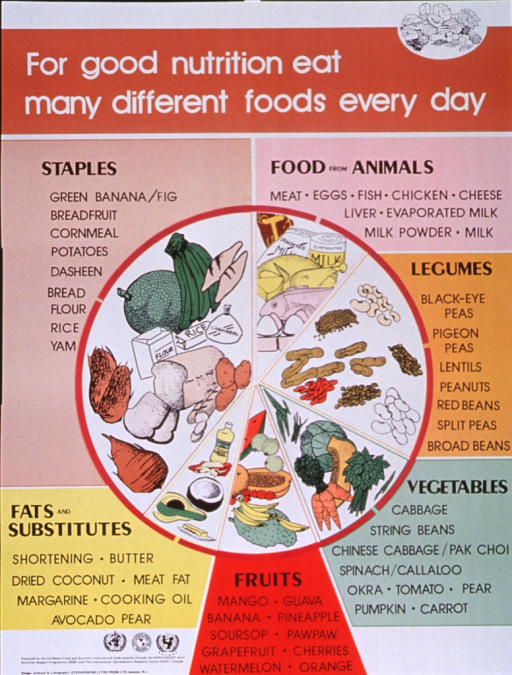 <p>Multicolor poster with white and black lettering.  Title at top of poster along with a line drawing of several different foods.  Center of poster features illustrations of different foods, divided into categories such as staples, food from animals, legumes, vegetables, fruits, and fats and substitutes.  Specific examples are also listed for each category.  Publisher and sponsor information in lower left corner.</p>