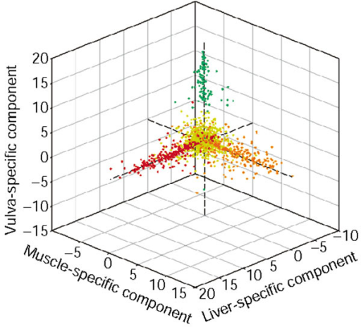 Three independent components of the human normal tissue data (dataset 5). Each gene is mapped to a point based on the value assigned to the gene in the 14th (x-axis), 15th (y-axis) and 55th (z-axis) independent components, which are enriched with liver-specific (red), muscle-specific (orange), and vulva-specific (green) genes, respectively. Genes not annotated as liver-, muscle- or vulva-specific are colored yellow.