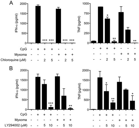 Chloroquine and PI3K inhibitor block the induction of IFN-α and TNF in human pDCs by myxoma virus.pDCs (2×105) were stimulated with CpG2216 (10 μg/ml), or infected with myxoma virus (MOI = 10), and were then treated with or without inhibitors including chloroquine (A), and LY294002 (B) at indicated concentrations. Supernatants were collected at 20 h post treatment and measured for IFN-α and TNF concentrations by ELISA. The values shown are averages of triplicate means (± SEM) of three independent experiments using human pDCs isolated from three different donors (*, p<0.05; **, p<0.01; ***, p<0.001).