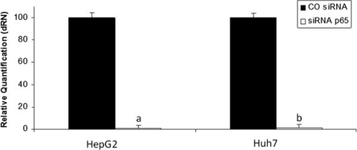 Knock down of p65 subunit shown by real-time PCR. Relative quantification of p65 normalised by the expression of GAPDH in HepG2 and Huh7 cells 24 hours after transfection. Values are shown as means and standard errors of the mean (SEM). a- siRNAp65x COsiRNA p<0.01-HepG2. b- siRNAp65x COsiRNA p<0.01-Huh7.