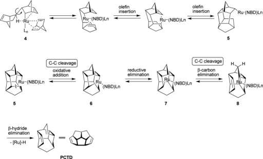 A possible mechanism of the formation of PCTD.