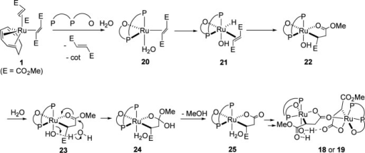 Mechanism of the fomation of 18 or 19.