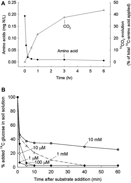 (A) Amount of 14C-amino acids remaining in soil sample after various periods of incubation. A mix of eleven labeled amino acids added and 14CO2 released also measured. From Jones et al. (2004) with permission. (B) Amount of 14C-glucose remaining in soil solution after various periods and for various concentrations in final solution. From Hill et al. (2008) with permission.