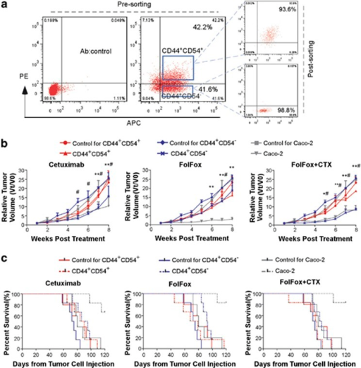 CD44+CD54+ R-CICs resist FolFox and cetuximab therapy in vivo. (a) The definition of CD44+CD54+ and CD44+CD54− cellular populations in rectospheroids and the resultant purity after cell sorting. (b) Treatment of tumor-bearing mice generated from CD44+CD54+ R-CICs, CD44+CD54−, and caco-2 cells with cetuximab, FolFox, and cetuximab plus FolFox in vivo. Data are mean tumor size±S.D. of five tumors per group derived from two independent experiments from different patients. (#P<0.01, CD44+CD54− compared with its control; **P<0.01, *P<0.05; Caco2 cells compared with its control). (c) Survival of tumor-bearing mice derived from CD44+CD54+ R-CICs (P=0.684, cetuximab; P=0.824, FolFox; P=0.207, FolFox–cetuximab), CD44+CD54− (P=0.019, cetuximab; P=0.001, FolFox; P=0.067, FolFox–cetuximab), and caco-2 cells (P=0.003, cetuximab; P=0.003, FolFox; P=0.003, FolFox–cetuximab) treated with different regimens