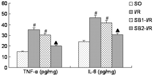 Effect of sodium butyrate preconditioning on TNF-α and IL-6 during I/R (n=5 for each group). #P<0.05 vs. the SO group; ▲P<0.05 vs. the I/R group. TNF-α, tumor necrosis factor-α; IL-6, interleukin-6; SO, sham-operated control; I/R, ischemia/reperfusion; SB1, sodium butyrate (100 mg/kg); SB2, sodium butyrate (300 mg/kg).