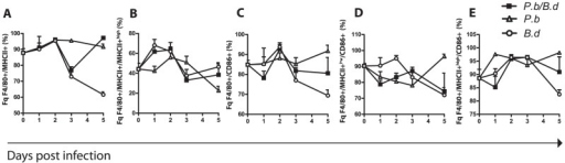 Dynamic MHCII presentation and delayed activation of MΦs during co-infection.Spleen mononuclear cells were extracted on consecutive days from single and co-infected mice. They were stained and counted in a LCRII flow cytometer (N = 6 per group) experiment performed in duplicate. (A) The percentage fraction of MHCII expressing cells in the F4/80+ population of SMCs. (B) The proportion of F4/80+MHCII+ MΦs expressing MHCII to a high extent (MHCII+high). (C) The fraction of CD11c+ DCs expressing the activation marker CD86. (D) The fraction of F4/80+MHCII+low cells expressing CD86. (E) The fraction of F4/80+MHCII+high cells expressing CD86, (▪) indicates mice infected with both P. berghei and B. duttonii, (○) B. duttonii infected animals, and (Δ) mice infected with P. berghei.