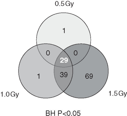 Venn diagram showing overlap patterns of genes which were show to be significantly modulated via microarray in peripheral blood mononuclear cells after various doses of α-particle radiation. Based on an n = 12 human donors.