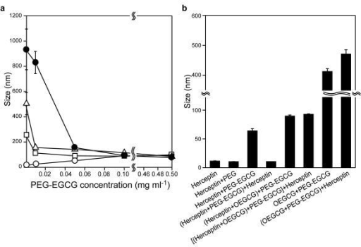 The core-shell MNC formationa, Complex size obtained when PEG-EGCG of various concentrations was added to the pre-formed Herceptin/OEGCG complexes (OEGCG = 0.09 μg ml−1 (white circles), 3 μg ml−1 (white squares), 6 μg ml−1 (white triangles) and 12 μg ml−1 (black circles)). PEG-EGCG assembled around the Herceptin/OEGCG complex of varied sizes, yielding uniformly sized complexes at the critical PEG-EGCG concentration required. The uniform size remained constant, despite further increase in the PEG-EGCG concentration. The data points represent mean values and the bars represent s.d. (n = 3). b, Complexes formed with various compositions and adding sequences. The sequential two-step self-assembly (the assembly of OEGCG with Herceptin followed by the PEG-EGCG assembly around the Herceptin/OEGCG complex) was necessary to construct the stable and spatially ordered MNC that showed no change in size by the post-addition of Herceptin. The results are reported as mean values and the bars represent s.d. (n = 3).