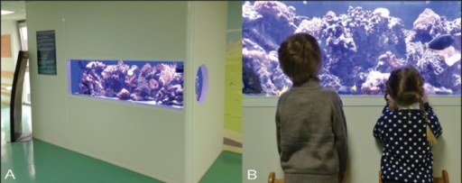 Pictures of the marine aquarium used for subjects' distraction.AThe 265-gallon (approximately 1000 L) saltwater aquarium was located in the department's main waiting room. Live population included >20 species of soft and hard corals and >25 fish with a specific lighting system that mimicked natural reef lighting at a depth of 5 m.BChildren and parents are invited to watch the aquarium