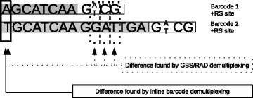 The importance of a good barcode design. This image shows 2 barcodes, completed with the restriction enzyme recognition site of ApeKI. If these barcodes are used for the demultiplexing of GBS or RAD data with the ApeKI enzyme, the software will recognize the correct barcodes (sample) because of the Hamming distance between the barcodes. When the barcodes are used with another or no enzyme, the barcodes will have a different distance. This could result in misdemultiplexing of the reads.
