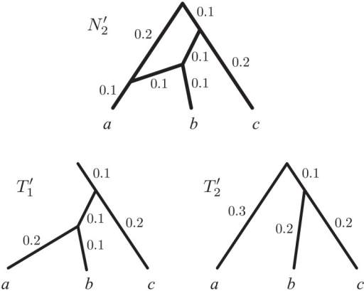 Trees displayed by a network.A rooted network , and the trees it displays ( and ), obtained by removing a segment of length 0.5 from the outgroup lineage of N2 in Fig. 2. In our formal setting, a network such as N2 in Fig. 2 can either be represented as  (by omitting the outgroup lineage, or part of it), or by rooting it in its outgroup (not shown).
